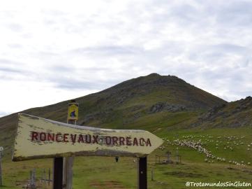 Roncesvalles Camino de Santiago