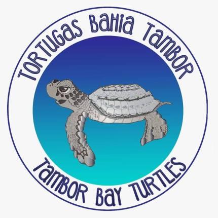 Tambor Bay Turtles Logo